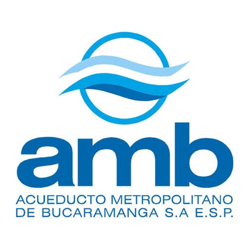 logo-02-amb