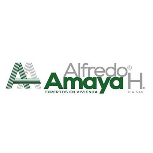 logo-04-amaya