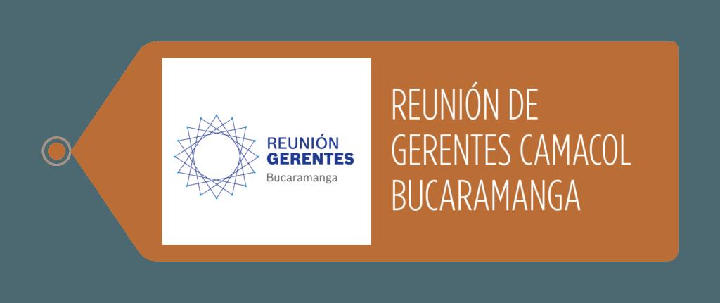 Reunion Gerentes CAMACOL Cundinamarca